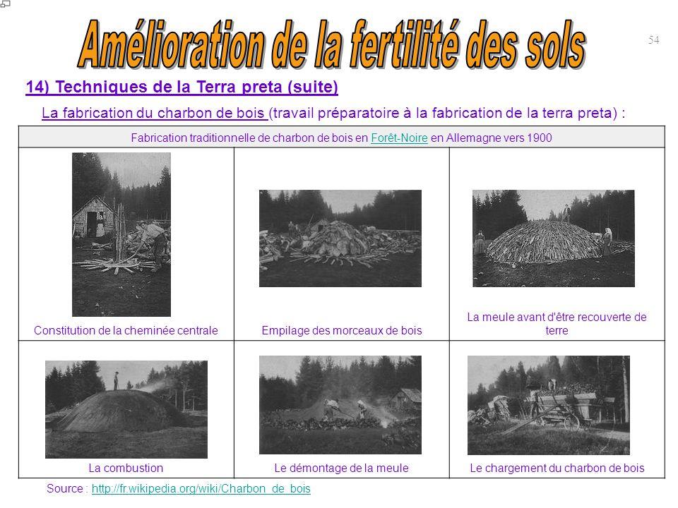 Fabrication traditionnelle de charbon de bois en Forêt-Noire en Allemagne vers 1900Forêt-Noire Constitution de la cheminée centraleEmpilage des morcea