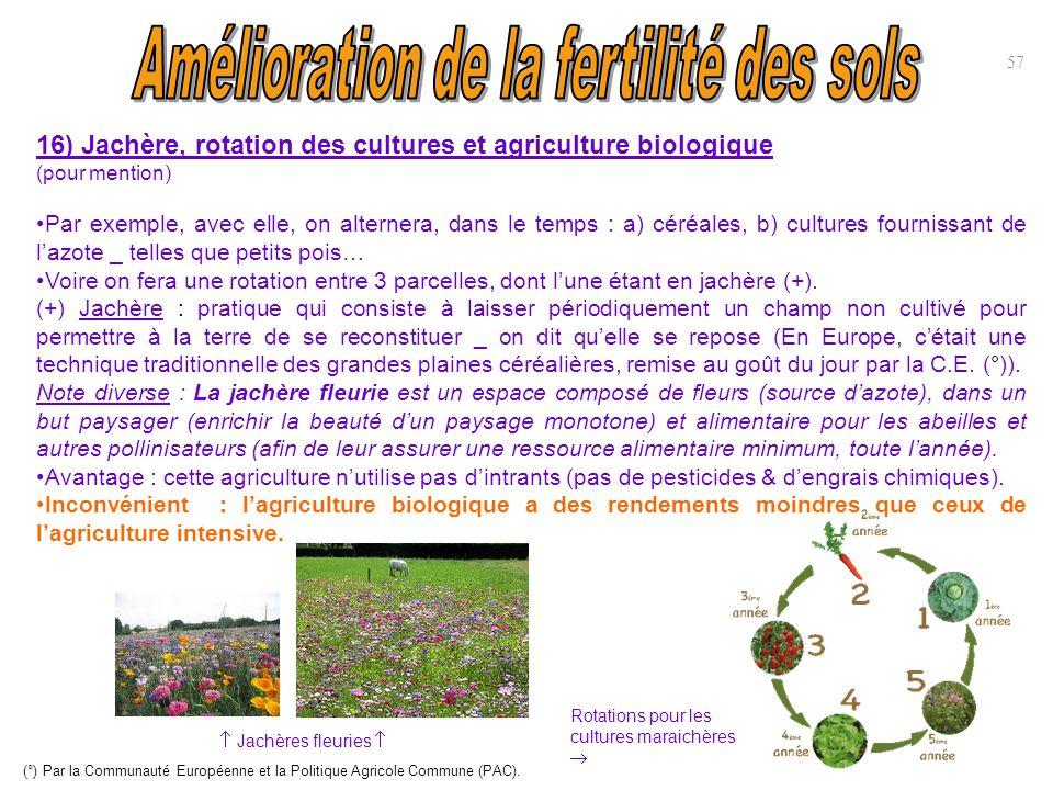 16) Jachère, rotation des cultures et agriculture biologique (pour mention) Par exemple, avec elle, on alternera, dans le temps : a) céréales, b) cult