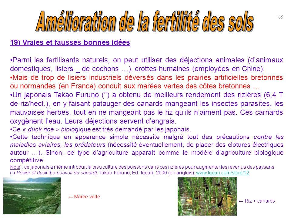 19) Vraies et fausses bonnes idées Parmi les fertilisants naturels, on peut utiliser des déjections animales (d'animaux domestiques, lisiers _ de coch