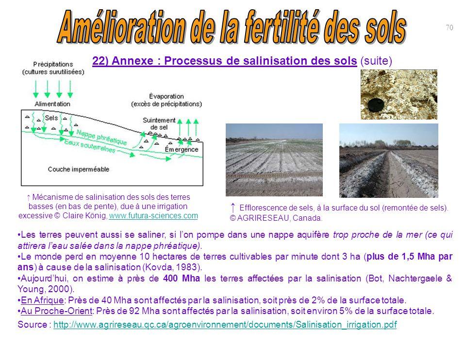 70 ↑ Efflorescence de sels, à la surface du sol (remontée de sels). © AGRIRESEAU, Canada. Les terres peuvent aussi se saliner, si l'on pompe dans une
