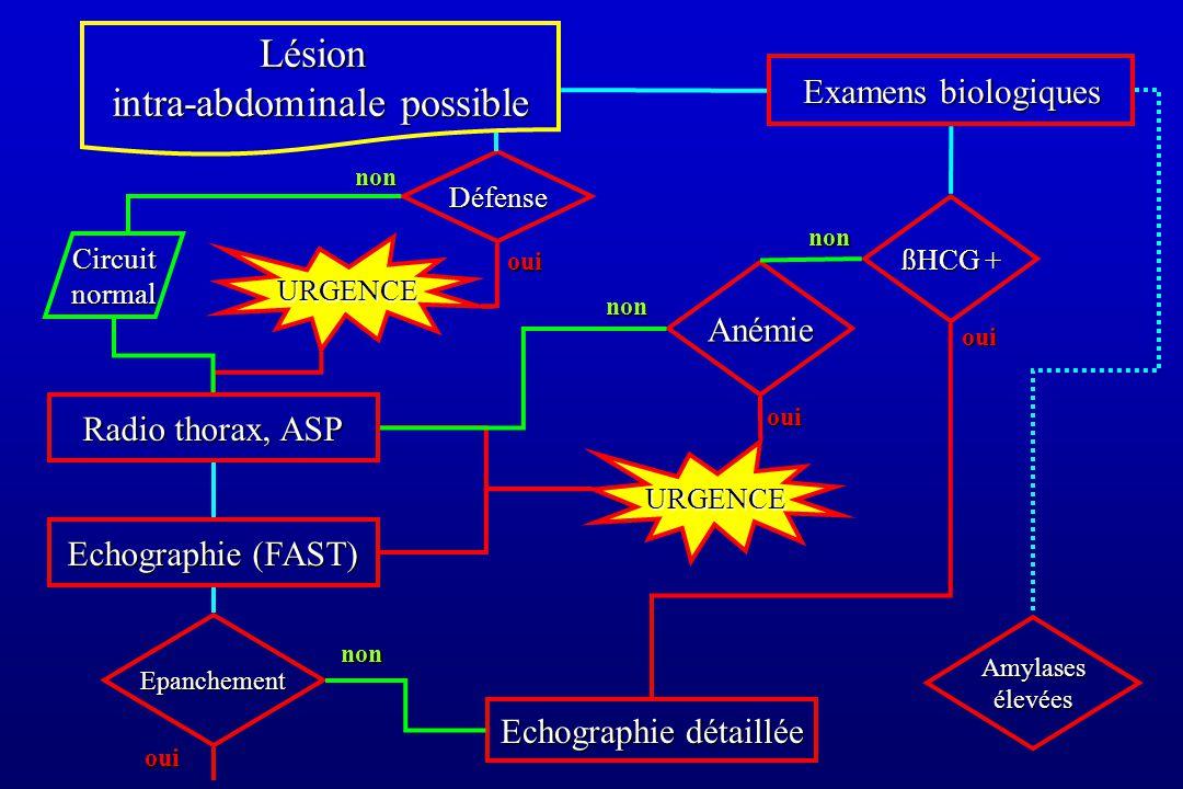 Lésion intra-abdominale possible Anémie Amylases élevées ßHCG + Examens biologiques Radio thorax, ASP Echographie (FAST) Echographie détaillée oui Epanchement non oui URGENCE non oui non Défense URGENCE oui Circuit normal non