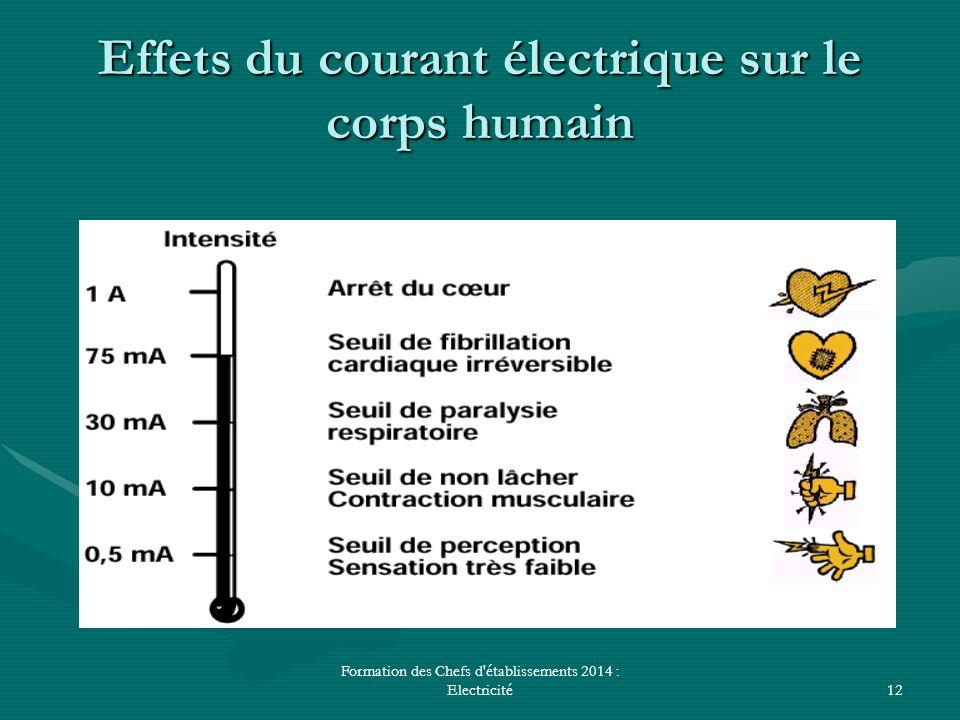 Formation des Chefs d'établissements 2014 : Electricité12 Effets du courant électrique sur le corps humain