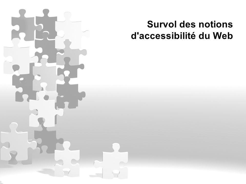 Survol des notions d'accessibilité du Web