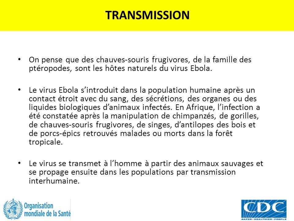 TRANSMISSION On pense que des chauves-souris frugivores, de la famille des ptéropodes, sont les hôtes naturels du virus Ebola. Le virus Ebola s'introd