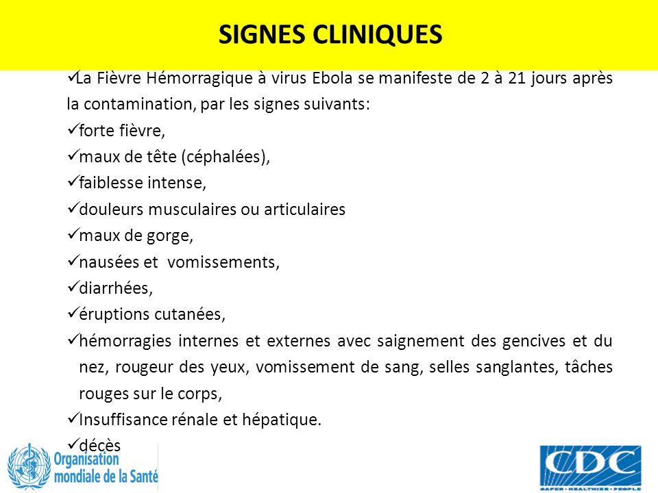 SIGNES CLINIQUES La Fièvre Hémorragique à virus Ebola se manifeste de 2 à 21 jours après la contamination, par les signes suivants: forte fièvre, maux
