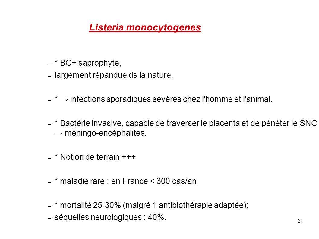 21 Listeria monocytogenes – * BG+ saprophyte, – largement répandue ds la nature. – * → infections sporadiques sévères chez l'homme et l'animal. – * Ba