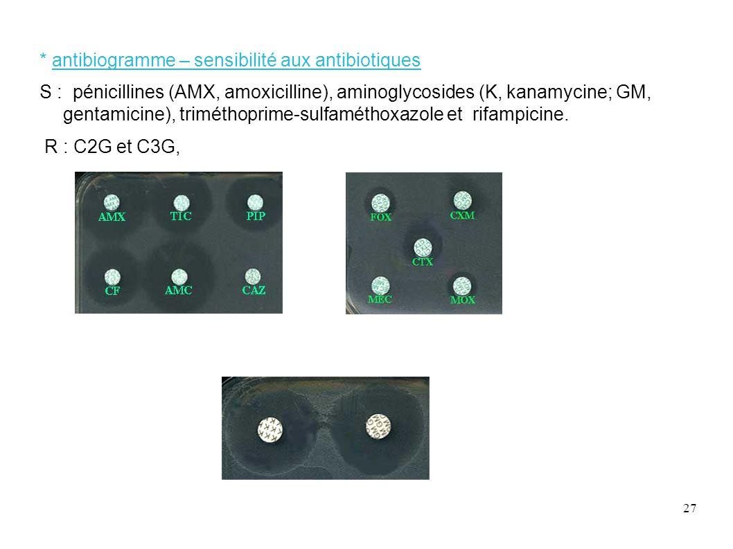 27 * antibiogramme – sensibilité aux antibiotiques S : pénicillines (AMX, amoxicilline), aminoglycosides (K, kanamycine; GM, gentamicine), triméthopri