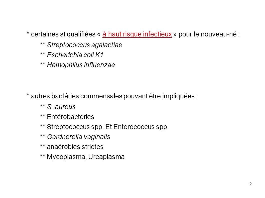 16 Streptococcus agalactiae = Streptocoque β hémolytique du groupe B bactéries commensales des voies génitales et de l intestin, éventuellement responsables d infections néonatales très sévères (septicémies, méningites).