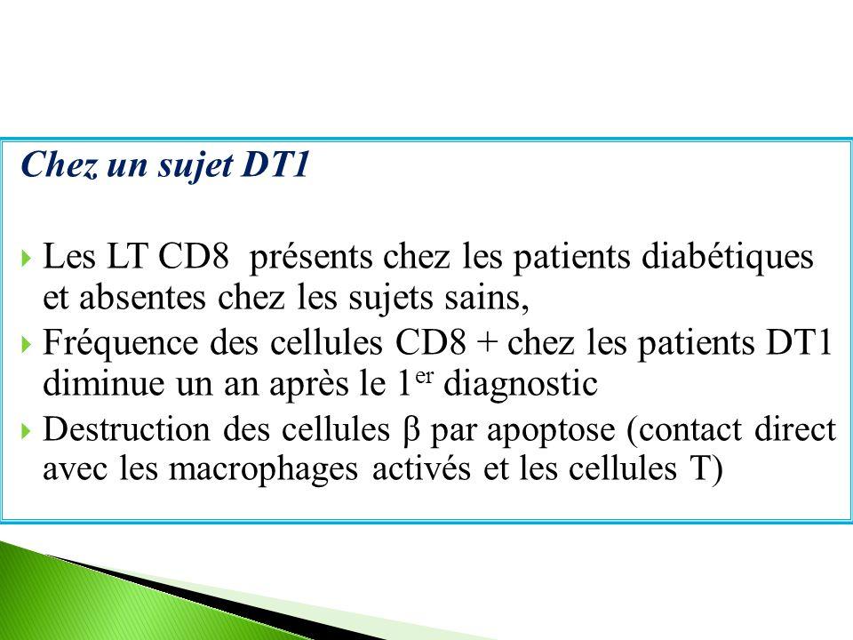 Chez un sujet DT1  Les LT CD8 présents chez les patients diabétiques et absentes chez les sujets sains,  Fréquence des cellules CD8 + chez les patients DT1 diminue un an après le 1 er diagnostic  Destruction des cellules β par apoptose (contact direct avec les macrophages activés et les cellules T)