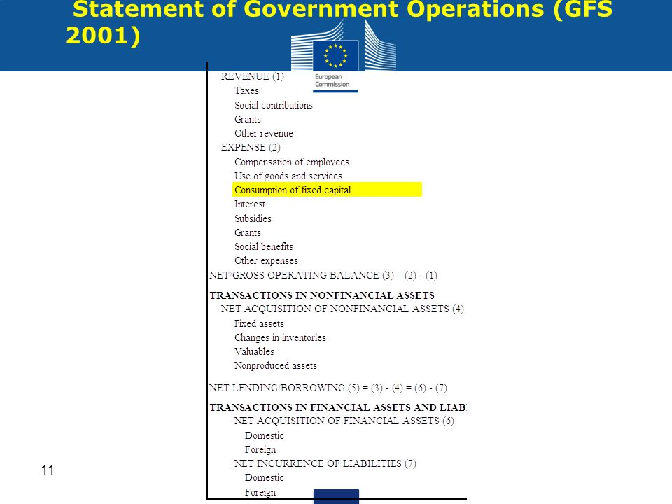 Statement of Government Operations (GFS 2001) 11