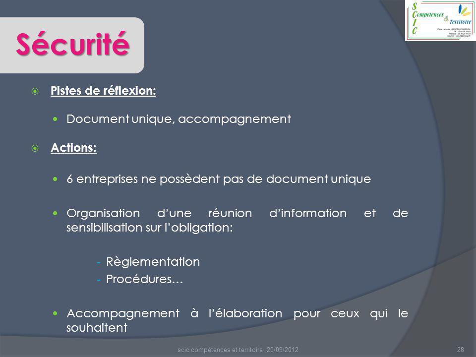  Pistes de réflexion: Document unique, accompagnement  Actions: 6 entreprises ne possèdent pas de document unique Organisation d'une réunion d'infor
