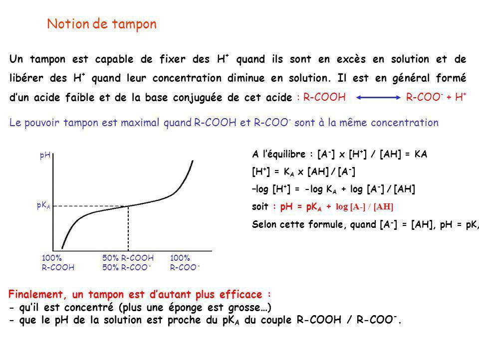 Notion de tampon Un tampon est capable de fixer des H + quand ils sont en excès en solution et de libérer des H + quand leur concentration diminue en solution.