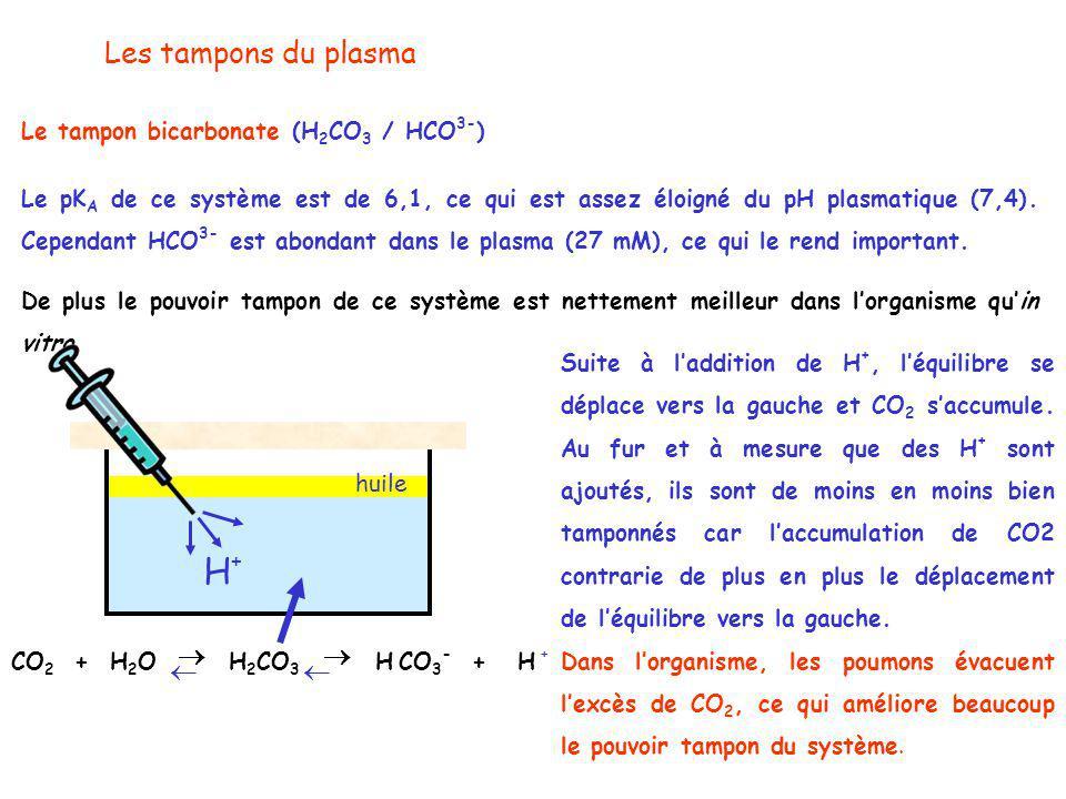 Les tampons du plasma Le tampon bicarbonate (H 2 CO 3 / HCO 3- ) Le pK A de ce système est de 6,1, ce qui est assez éloigné du pH plasmatique (7,4).