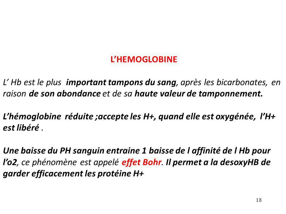 18 L'HEMOGLOBINE L' Hb est le plus important tampons du sang, après les bicarbonates, en raison de son abondance et de sa haute valeur de tamponnement.