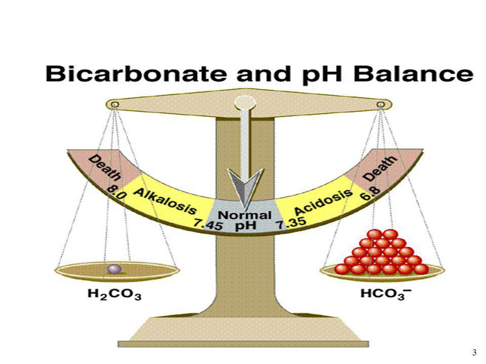 3 Acidose et alcalose physiologique