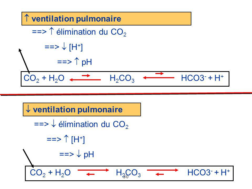 30  ventilation pulmonaire ==>  élimination du CO 2 ==>  [H + ] ==>  pH  ventilation pulmonaire ==>  élimination du CO 2 ==>  [H + ] ==>  pH C