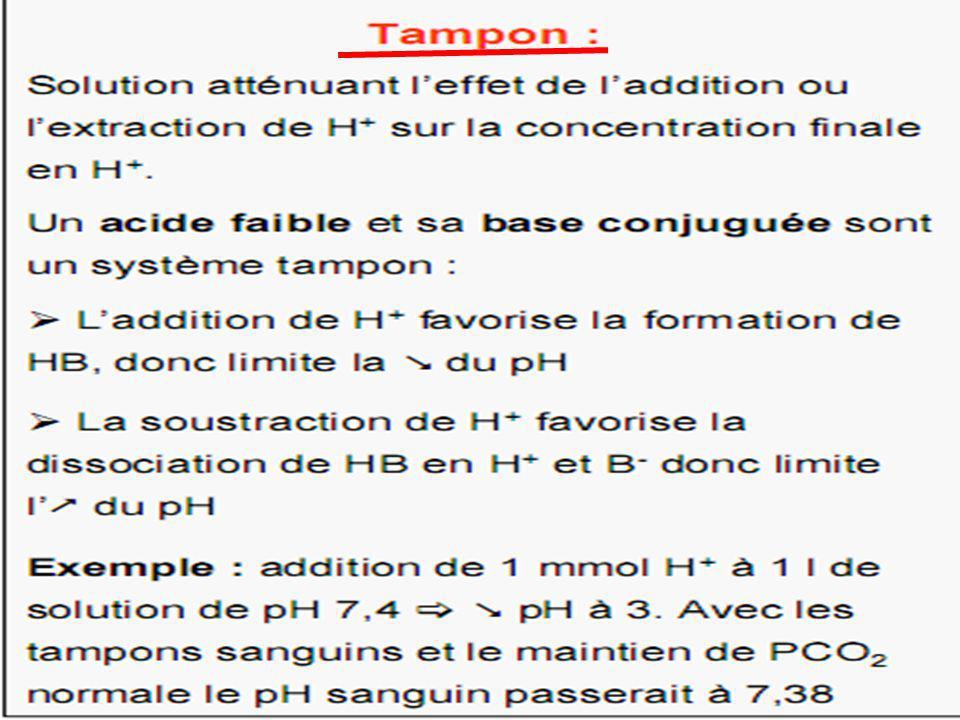30  ventilation pulmonaire ==>  élimination du CO 2 ==>  [H + ] ==>  pH  ventilation pulmonaire ==>  élimination du CO 2 ==>  [H + ] ==>  pH CO 2 + H 2 OH 2 CO 3 HCO3 - + H + CO 2 + H 2 OH 2 CO 3 HCO3 - + H +