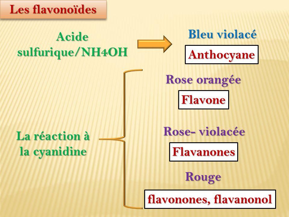 Les flavonoïdes Acide sulfurique/NH4OH Bleu violacé Anthocyane La réaction à la cyanidine Rose orangée Flavone Rose- violacée Flavanones Rouge flavono