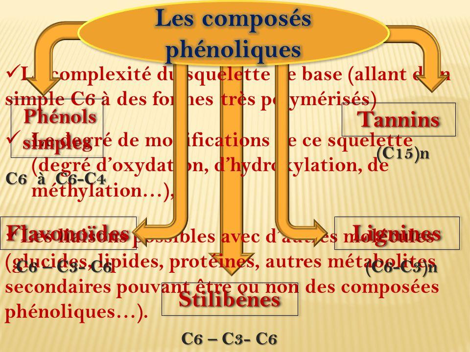 2. Classification La complexité du squelette de base (allant d'un simple C6 à des formes très polymérisés) Le degré de modifications de ce squelette (