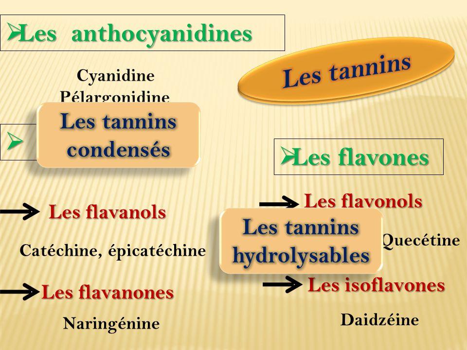 Hydrolyse chimique/enzymatique Glucose, ou l'acide quinique Acide gallique Gallotannins Dimère de l'acide gallique Ellagitannins Oligomères/polymères de Flavane-3-ols ou flavane- 3,4-diols dérivés de la (+) catéchine Résistants à l'hydrolyse Traitement acide à chaud Pigments rouges ProanthocyanidinesProanthocyanidines