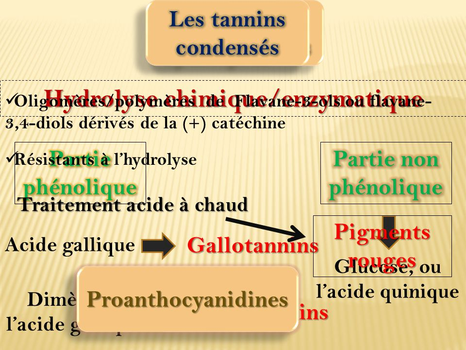 Hydrolyse chimique/enzymatique Glucose, ou l'acide quinique Acide gallique Gallotannins Dimère de l'acide gallique Ellagitannins Oligomères/polymères