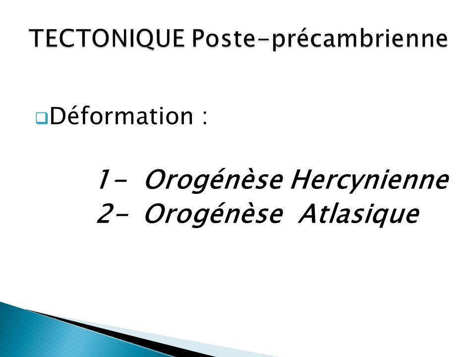  Déformation : 1- Orogénèse Hercynienne 2- Orogénèse Atlasique