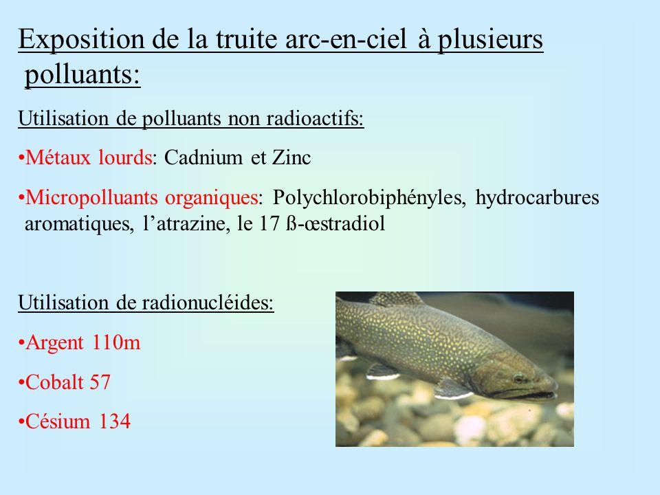 Bioaccumulation des radionucléides: Argent: forte accumulation dans le foie, mais faible contamination des tissus musculaires.