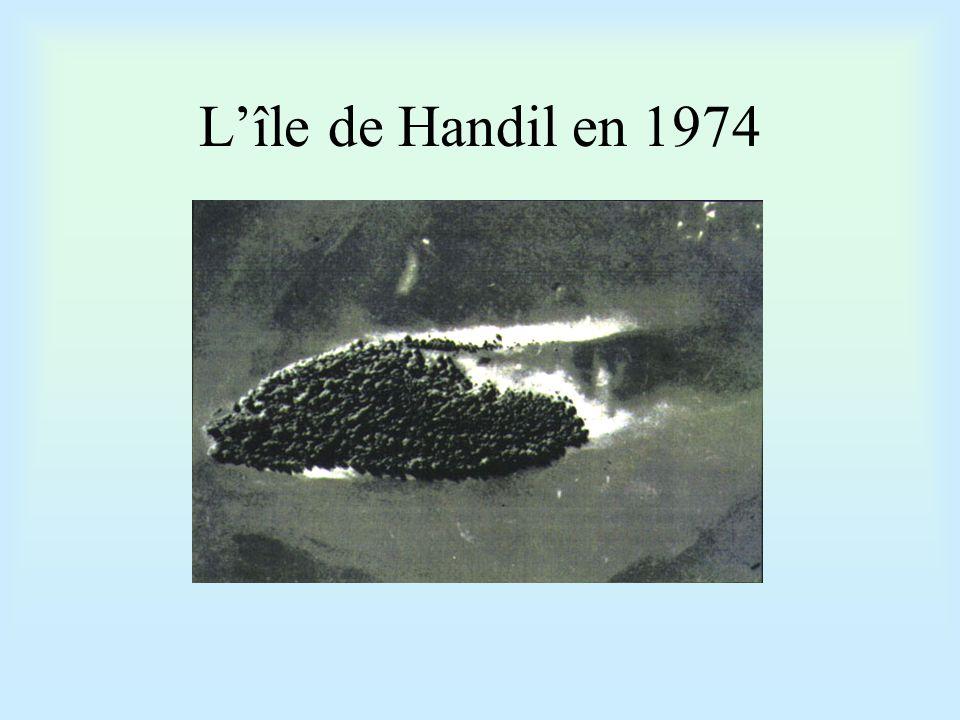 L 'île de Handil en 1987
