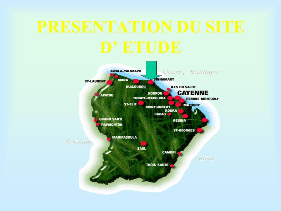 PROBLEMATIQUE : Passage d'un écosystème fluviatile forestier à un écosystème lacustre Variation des paramètres physico- chimiques: Stratification ( T° ) Dégradation de la matière organique Décantation des MES