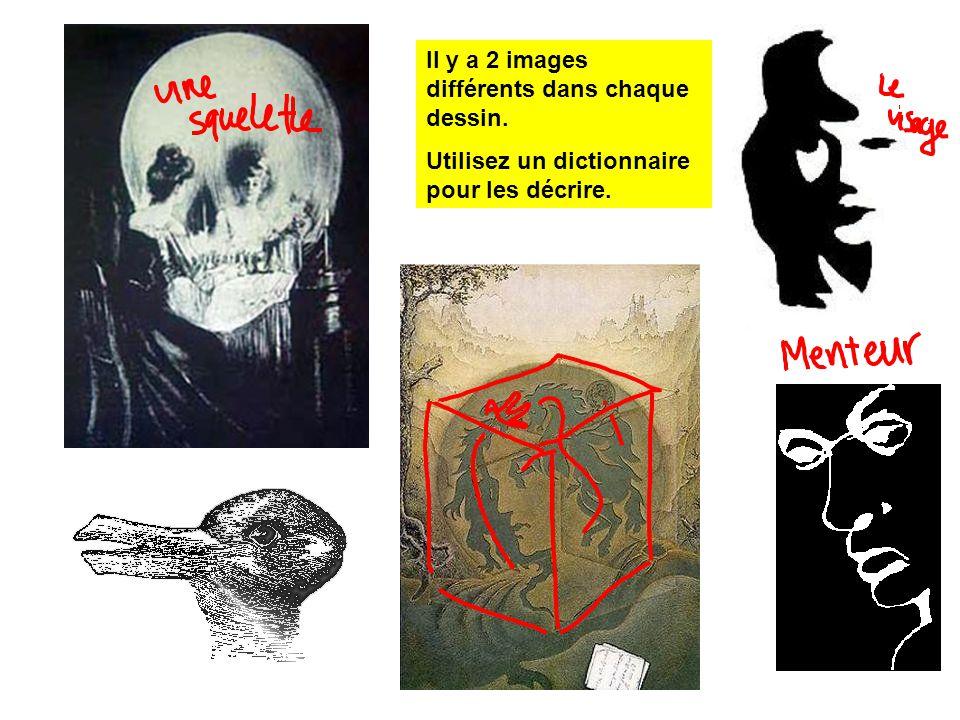 Il y a 2 images différents dans chaque dessin. Utilisez un dictionnaire pour les décrire.