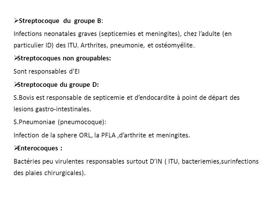  Streptocoque du groupe B: Infections neonatales graves (septicemies et meningites), chez l'adulte (en particulier ID) des ITU, Arthrites, pneumonie,