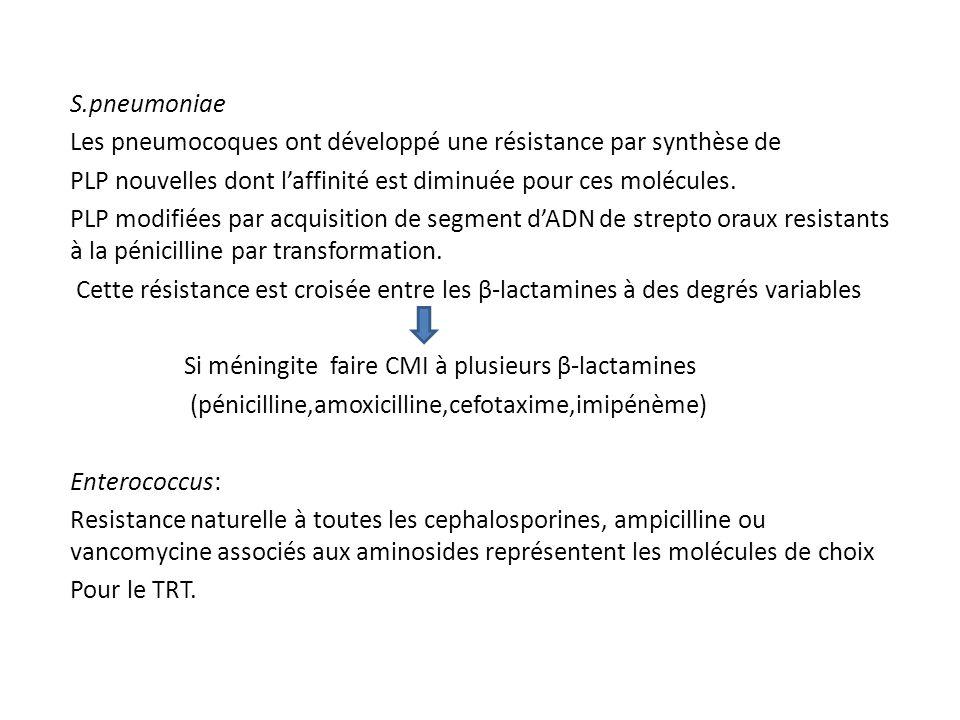 S.pneumoniae Les pneumocoques ont développé une résistance par synthèse de PLP nouvelles dont l'affinité est diminuée pour ces molécules. PLP modifiée