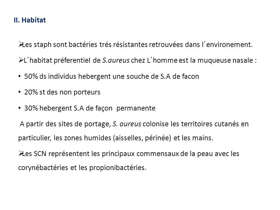 II. Habitat  Les staph sont bactéries trés résistantes retrouvées dans l´environement.  L´habitat préferentiel de S.aureus chez L´homme est la muque