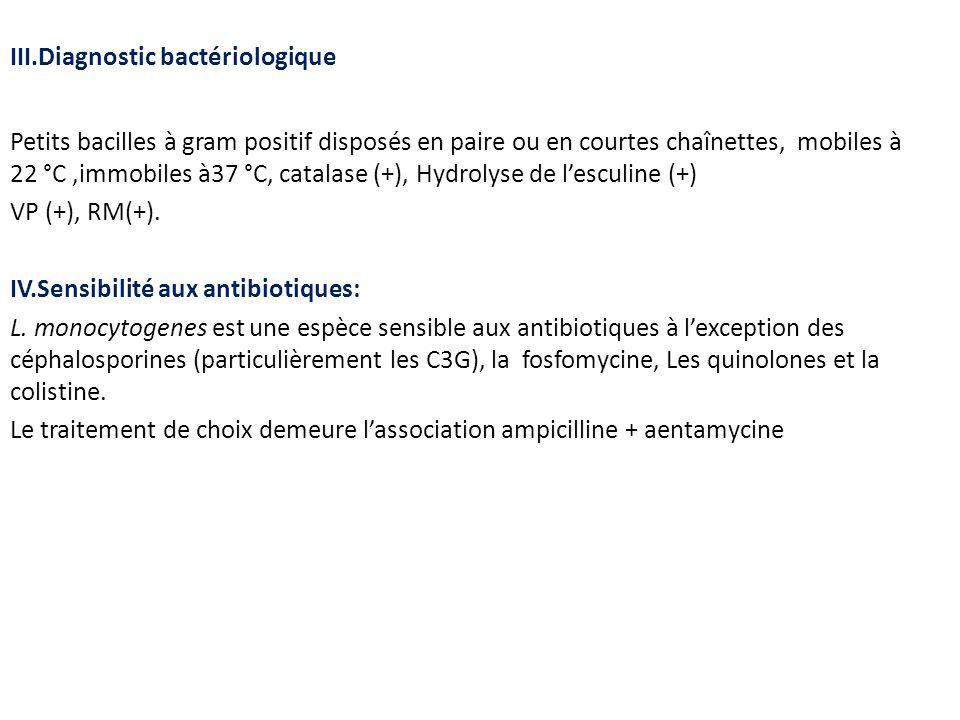 III.Diagnostic bactériologique Petits bacilles à gram positif disposés en paire ou en courtes chaînettes, mobiles à 22 °C,immobiles à37 °C, catalase (