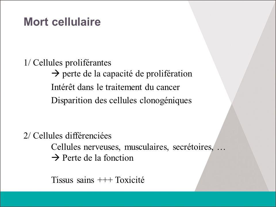 Mort cellulaire 1/ Cellules proliférantes  perte de la capacité de prolifération Intérêt dans le traitement du cancer Disparition des cellules clonog