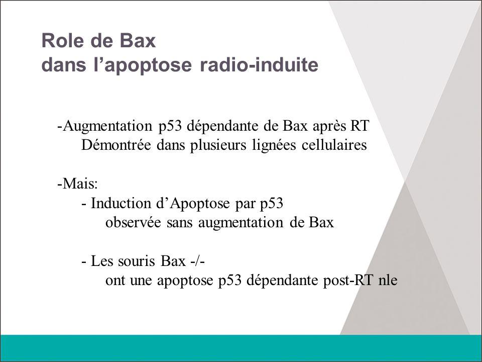 Role de Bax dans l'apoptose radio-induite -Augmentation p53 dépendante de Bax après RT Démontrée dans plusieurs lignées cellulaires -Mais: - Induction