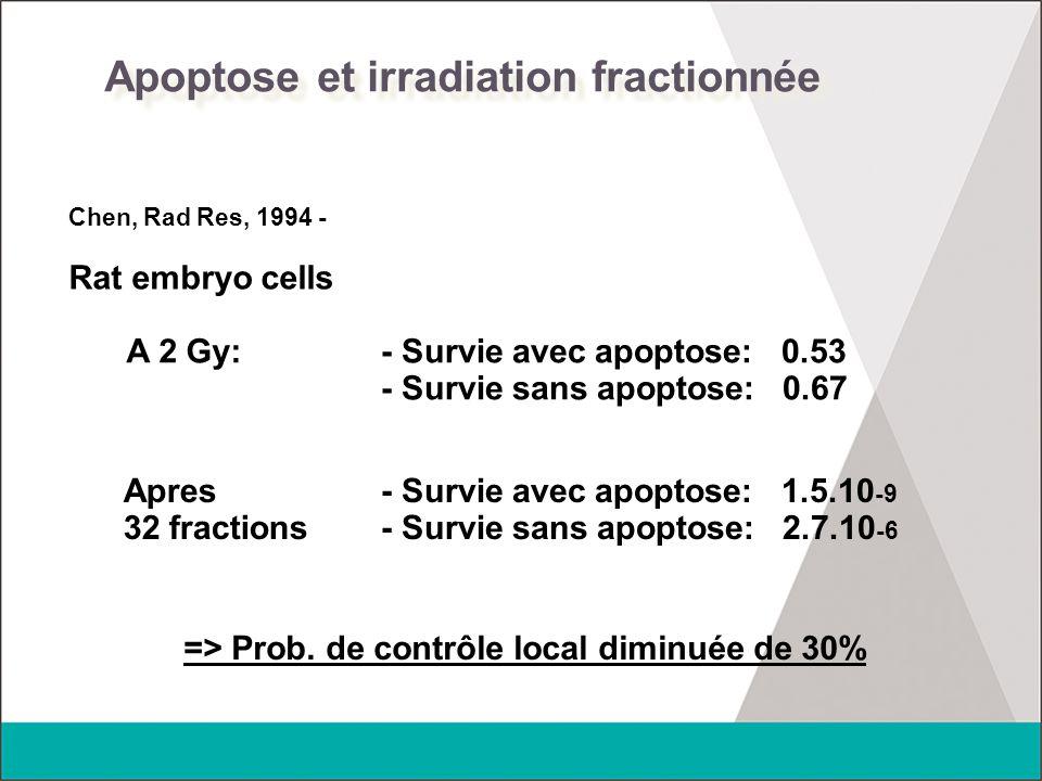 Apoptose et irradiation fractionnée Chen, Rad Res, 1994 - Rat embryo cells - Survie avec apoptose: 0.53 - Survie sans apoptose: 0.67 A 2 Gy: Apres 32