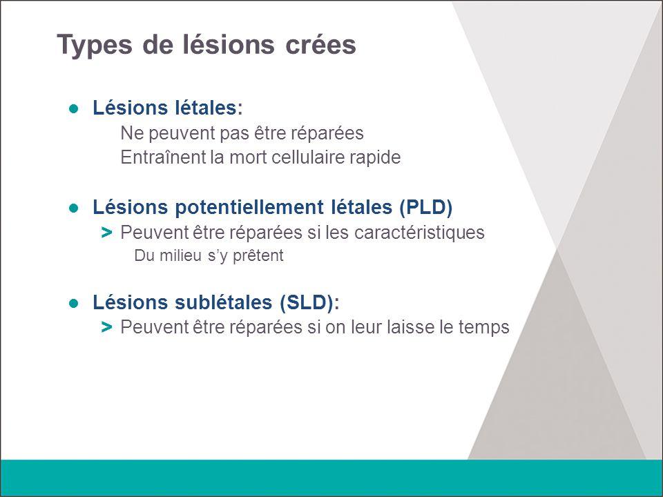 Types de lésions crées Lésions létales: Ne peuvent pas être réparées Entraînent la mort cellulaire rapide Lésions potentiellement létales (PLD) > Peuv
