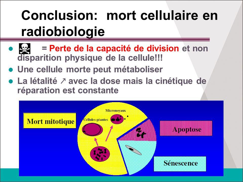 Conclusion: mort cellulaire en radiobiologie = Perte de la capacité de division et non disparition physique de la cellule!!! Une cellule morte peut mé