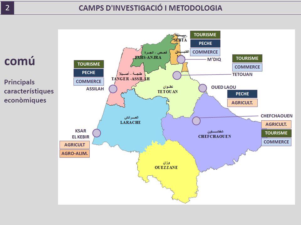 comú Principals característiques econòmiques CAMPS D INVESTIGACIÓ I METODOLOGIA 2