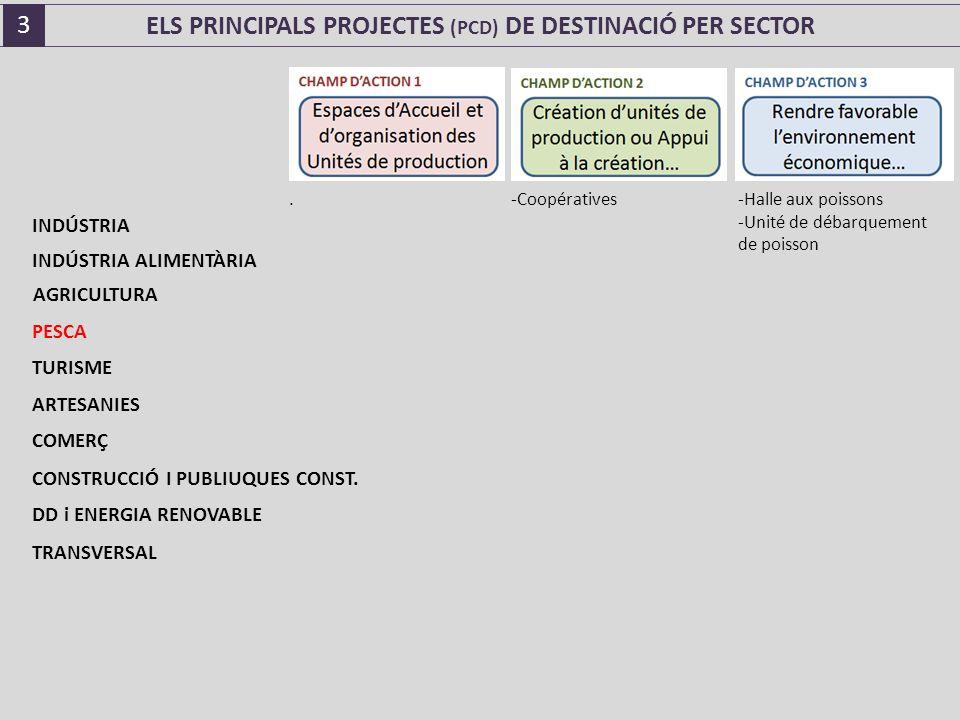 ELS PRINCIPALS PROJECTES (PCD) DE DESTINACIÓ PER SECTOR.