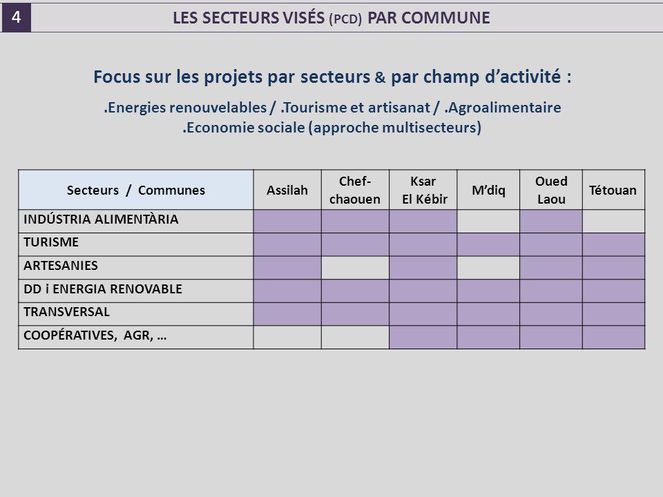 LES SECTEURS VISÉS (PCD) PAR COMMUNE Focus sur les projets par secteurs & par champ d'activité :.Energies renouvelables /.Tourisme et artisanat /.Agroalimentaire.Economie sociale (approche multisecteurs) Secteurs / CommunesAssilah Chef- chaouen Ksar El Kébir M'diq Oued Laou Tétouan INDÚSTRIA ALIMENTÀRIA TURISME ARTESANIES DD i ENERGIA RENOVABLE TRANSVERSAL COOPÉRATIVES, AGR, … 4