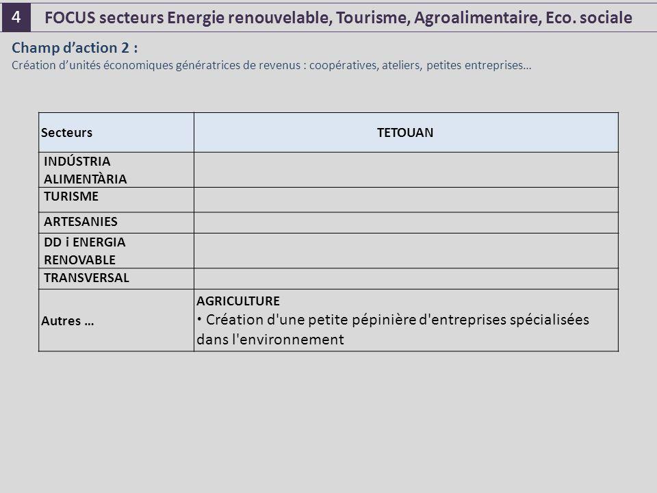 SecteursTETOUAN INDÚSTRIA ALIMENTÀRIA TURISME ARTESANIES DD i ENERGIA RENOVABLE TRANSVERSAL Autres … AGRICULTURE  Création d une petite pépinière d entreprises spécialisées dans l environnement Champ d'action 2 : Création d'unités économiques génératrices de revenus : coopératives, ateliers, petites entreprises… FOCUS secteurs Energie renouvelable, Tourisme, Agroalimentaire, Eco.