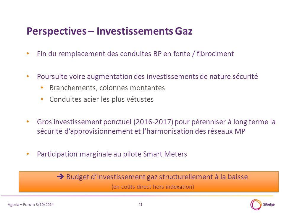 21 Fin du remplacement des conduites BP en fonte / fibrociment Poursuite voire augmentation des investissements de nature sécurité Branchements, colon