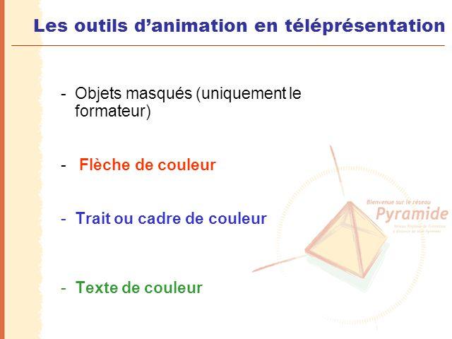Les outils d'animation en téléprésentation -Objets masqués (uniquement le formateur) - Flèche de couleur -Trait ou cadre de couleur -Texte de couleur