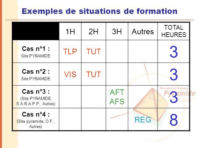 Exemples de situations de formation 1H2H3HAutres TOTAL HEURES Cas n°1 : Site PYRAMIDE TLPTUT 3 Cas n°2 : Site PYRAMIDE VISTUT 3 Cas n°3 : (Site PYRAMI