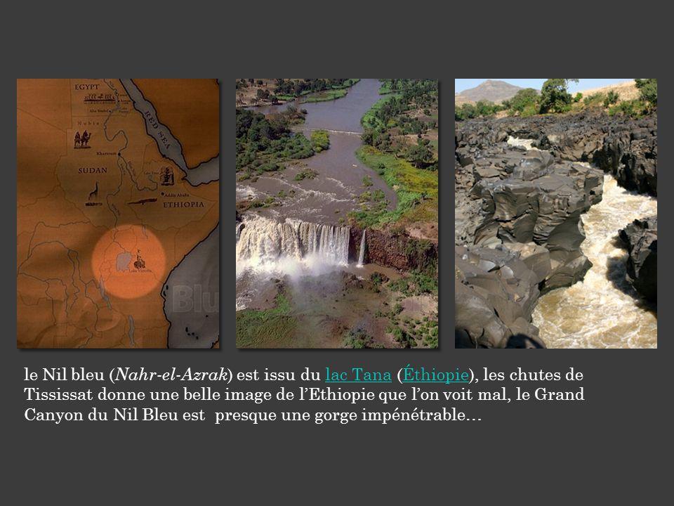 le Nil bleu ( Nahr-el-Azrak ) est issu du lac Tana (Éthiopie), les chutes de Tississat donne une belle image de l'Ethiopie que l'on voit mal, le Grand