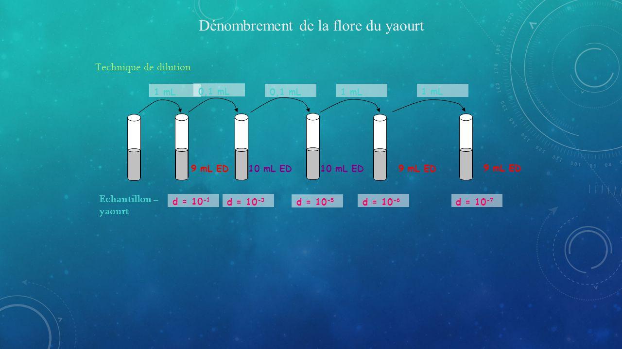 9 mL ED10 mL ED Dénombrement de la flore du yaourt Technique de dilution Echantillon = yaourt 1 mL d = 10 -1 0,1 mL d = 10 -3 0,1 mL 10 mL ED d = 10 -5 1 mL 9 mL ED d = 10 -6 1 mL 9 mL ED d = 10 -7
