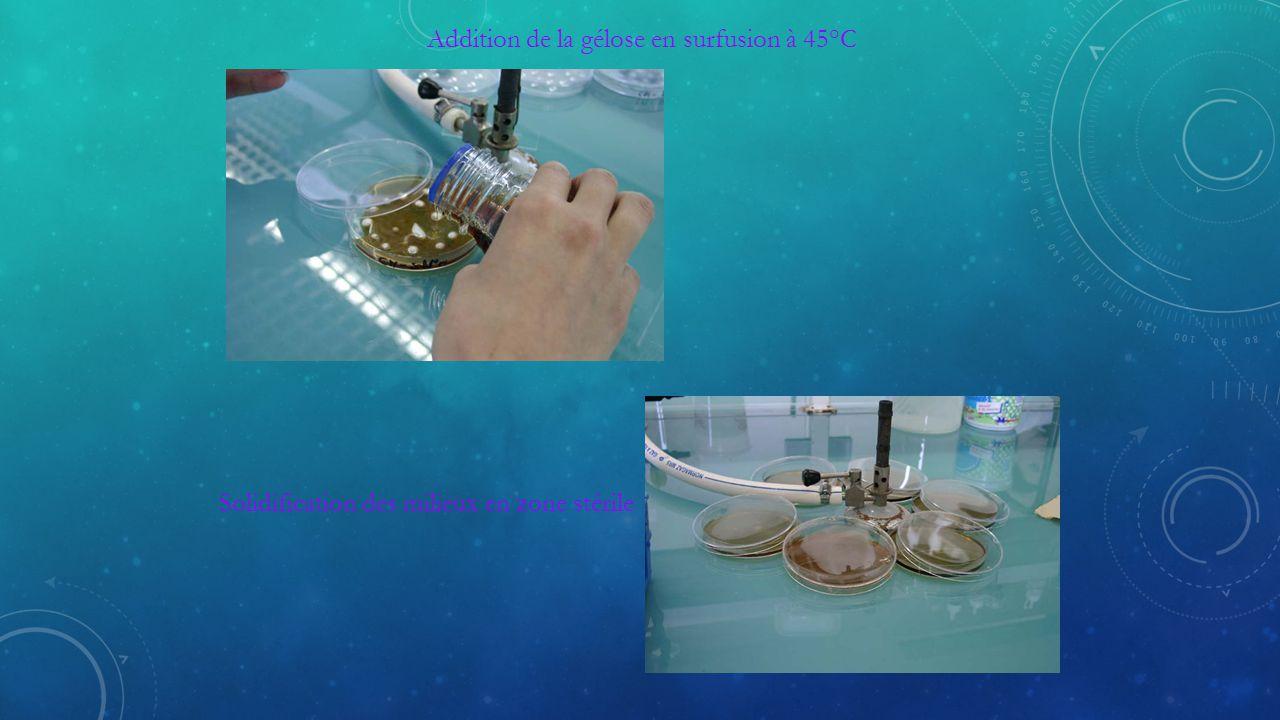 Addition de la gélose en surfusion à 45°C Solidification des milieux en zone stérile