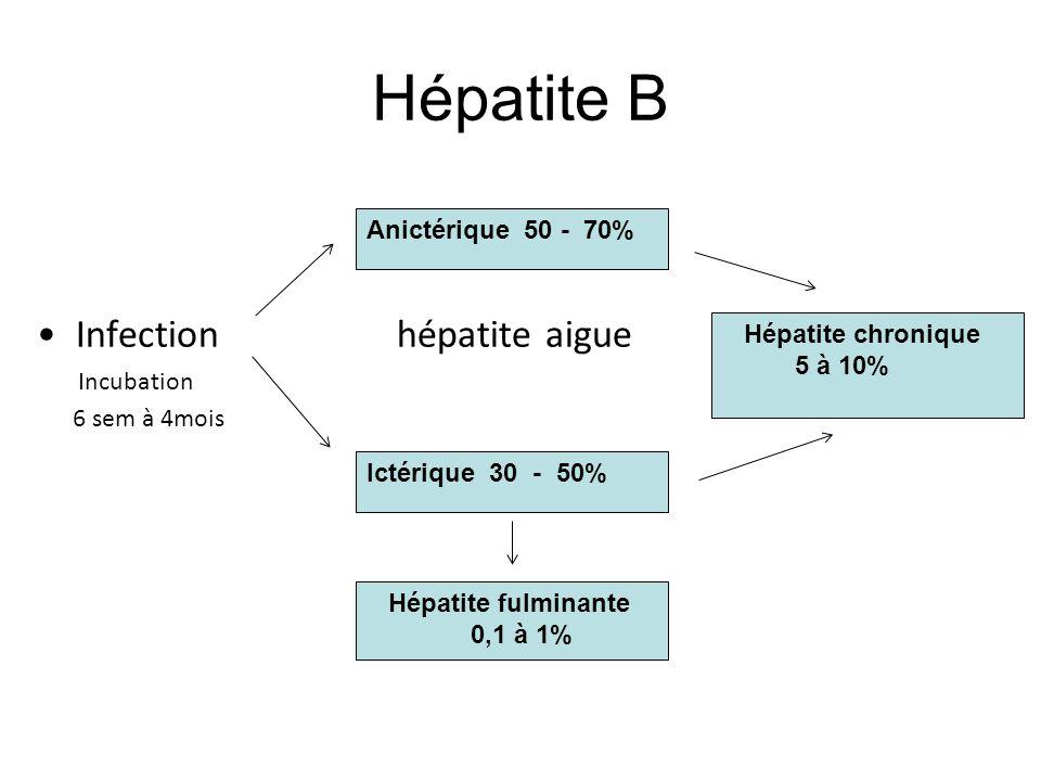 Hépatite B Infection hépatite aigue Incubation 6 sem à 4mois Anictérique 50 - 70% Ictérique 30 - 50% Hépatite fulminante 0,1 à 1% Hépatite chronique 5